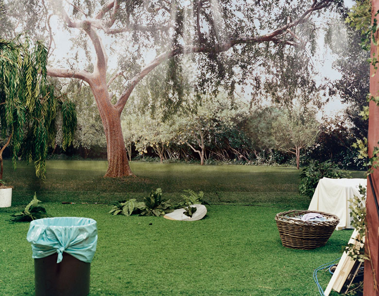 Larry Sultan 1